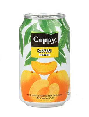 Cappy Kayısı Meyvesuyu